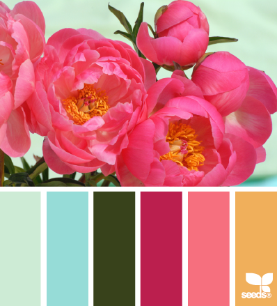 2014 03 05 Design Seeds PeonyPalette
